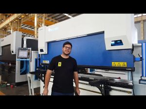 6-Axis CNC press brake euro pro B32135 with wila clamping system through Australian customers